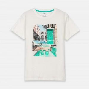 Camiseta Estampado...